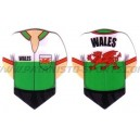 Flight Shirt - 021 Wales
